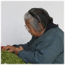 green tea sorting