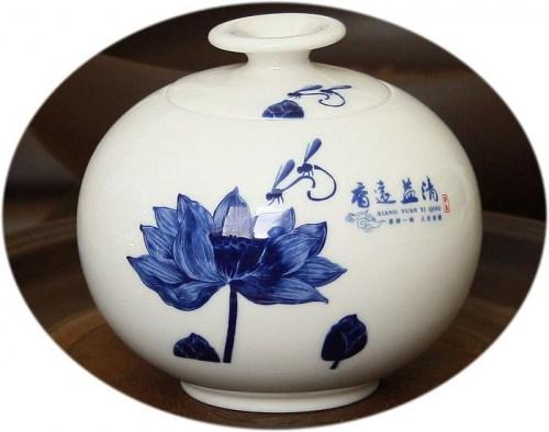 Large tea canister - imperial dragon fly